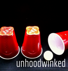 unhoodwinked -real one - Copy